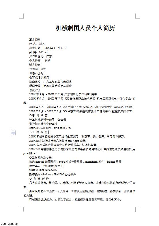 2014纸飞机彩色简历模板